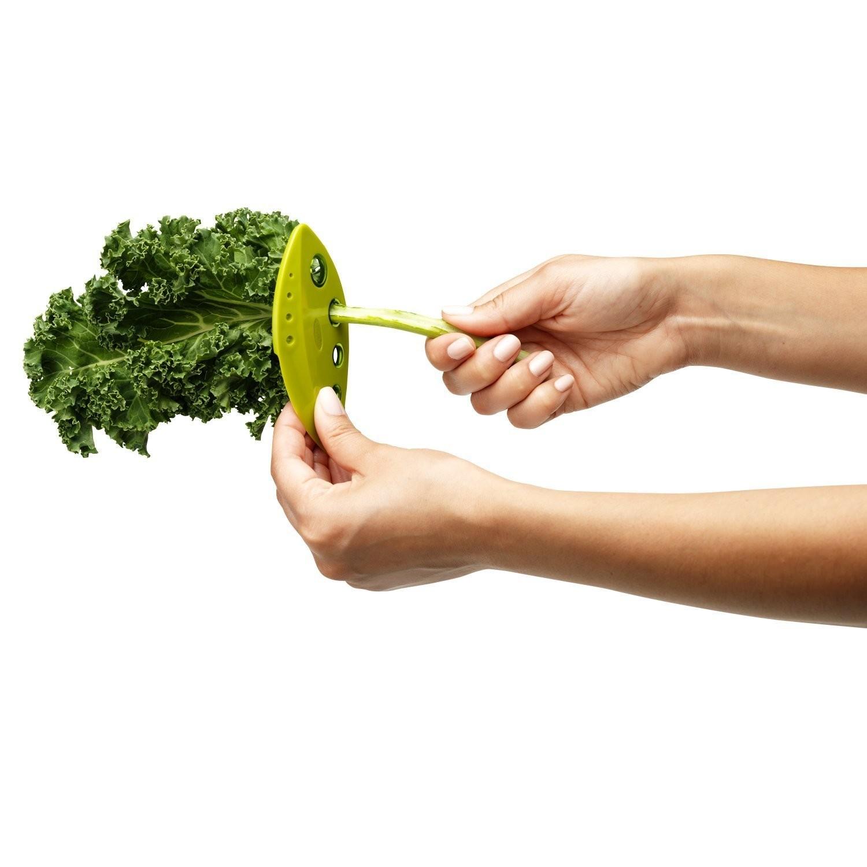 Chef n kale  chard  collard greens and herb stripper3