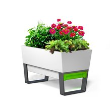 Thumb medium glowpear urban garden self watering planter