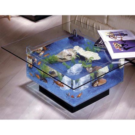 Aqua square coffee table 25 gallon aquarium2