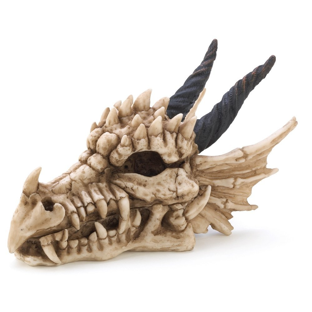 Dragon skull treasure