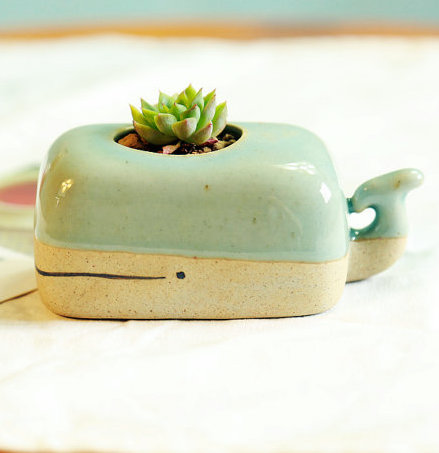 Turquoise whale planter