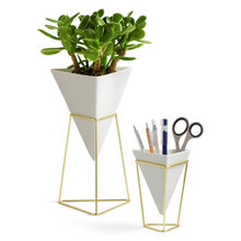 Thumb medium umbra trigg planter set