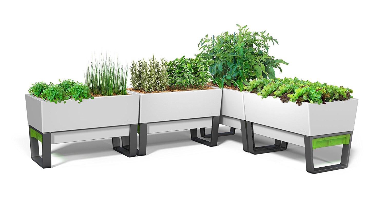 Glowpear urban garden self watering planter 2