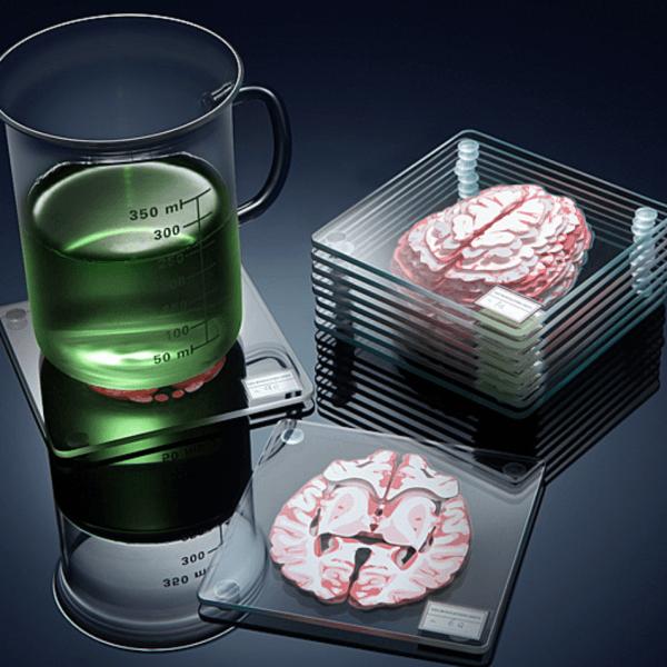 brain specimen coasters 600x600