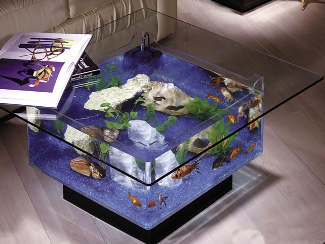 Aqua square coffee table 25 gallon aquarium1